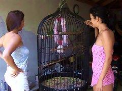 Free Porn A Pair Of White Girls Love Sharing A Big, Black Dildo