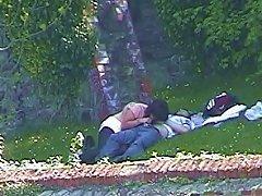 Free Porn Fun In The Park